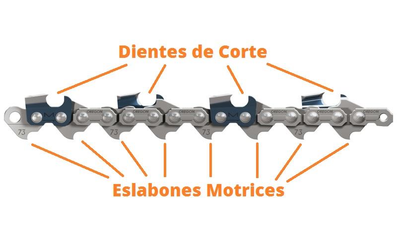dientes de corte y eslabones motrices de una cadena de motosierra